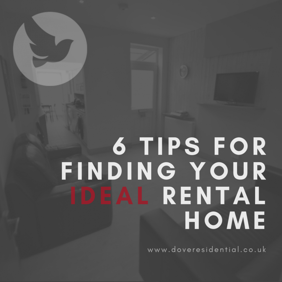 6 Tips for Finding your Ideal Rental Home