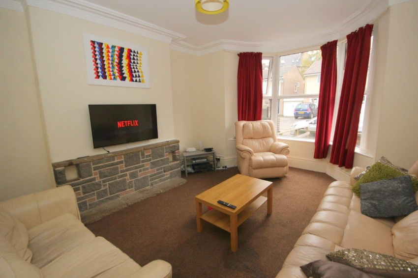 Endcliffe Terrace Road - Sheffield Student House - Lounge